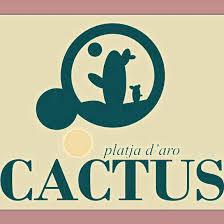 Bar Cactus